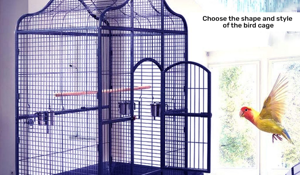 Choose the shape and style of Bird Cage